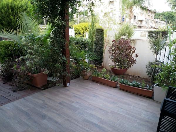 הגינה של המרפאה של ד''ר אנקר